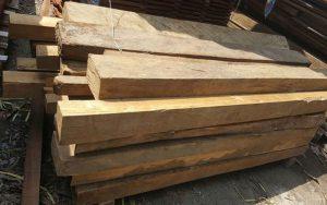 gỗ pơ-mu thuộc nhóm mấy