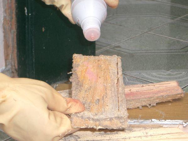 xử lý chống mối mọt cho gỗ
