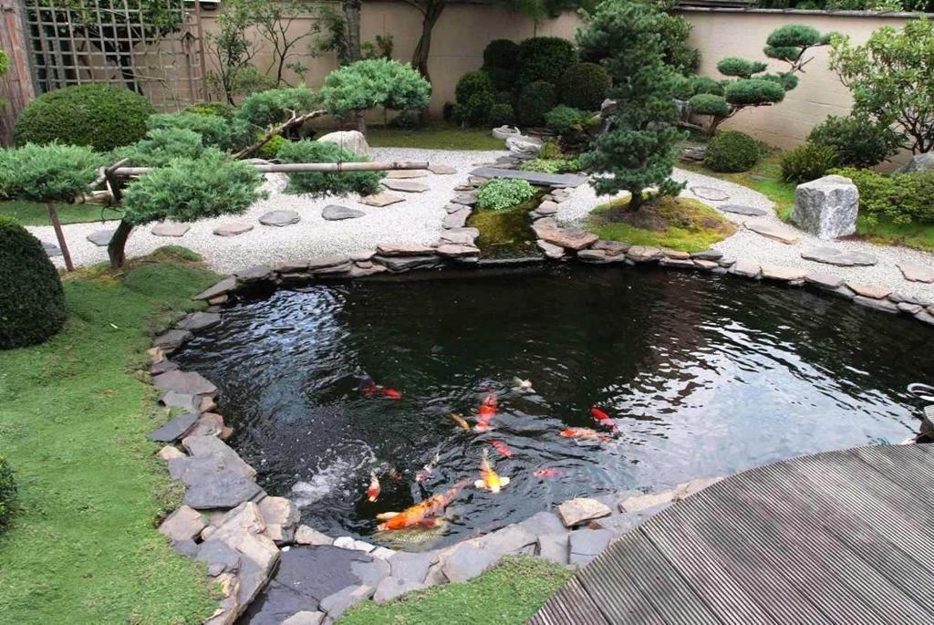 thi công sân vườn có hồ cá