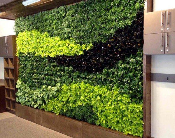 làm tường cây xanh